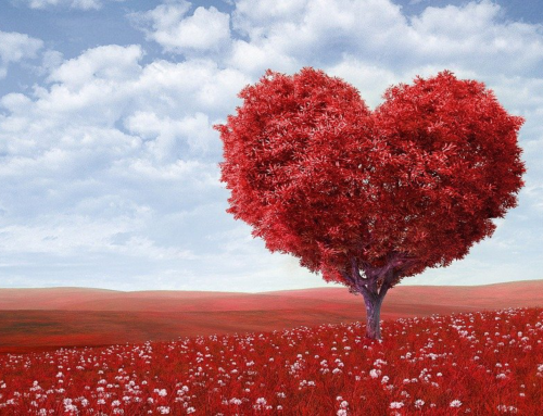 Backdrop Ideas for Valentine's Day Photo Booth